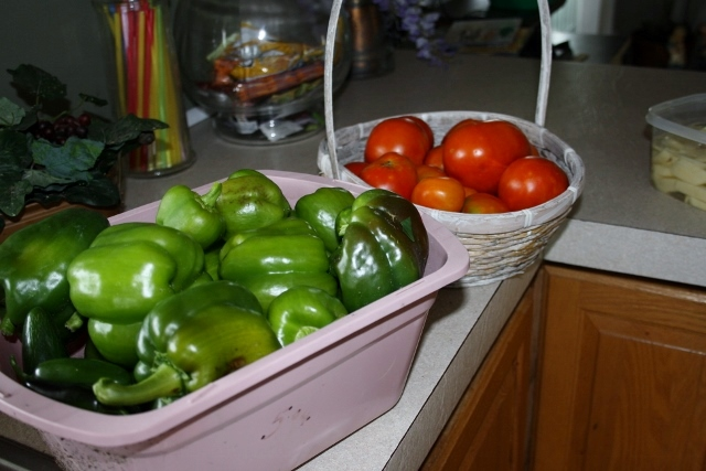 Green bell peppers, jalapenos, tomatoes