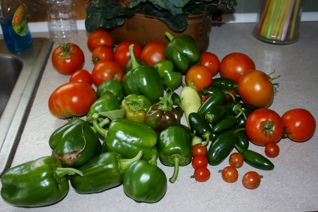 These is the last big Summer harvest that we will have - banana pepper (only one so far), cherry tomatoes, tomatoes, green bell peppers, and jalapenos.