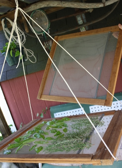 For just $4, my mom and I made this awesome herb dryer using old wooden screens from the Habitat for Humanity store.
