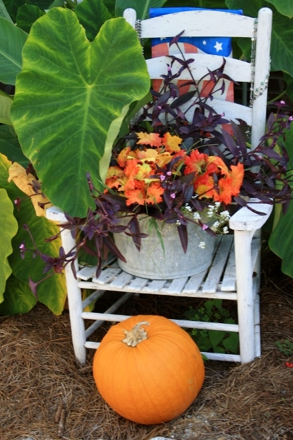 Fall decorations - I love the colors of this season.