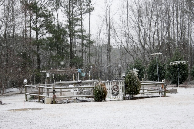 "The snow falling on Monday morning. Some reports say that we got about 1/2"" here."