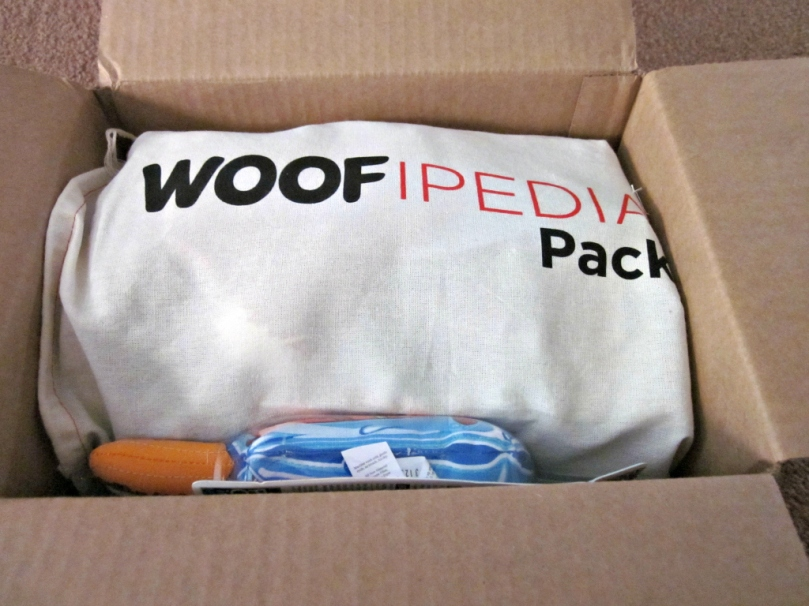 Belle's WOOFIPEDIA pack from AKC arrived on Tuesday, perfect timing.